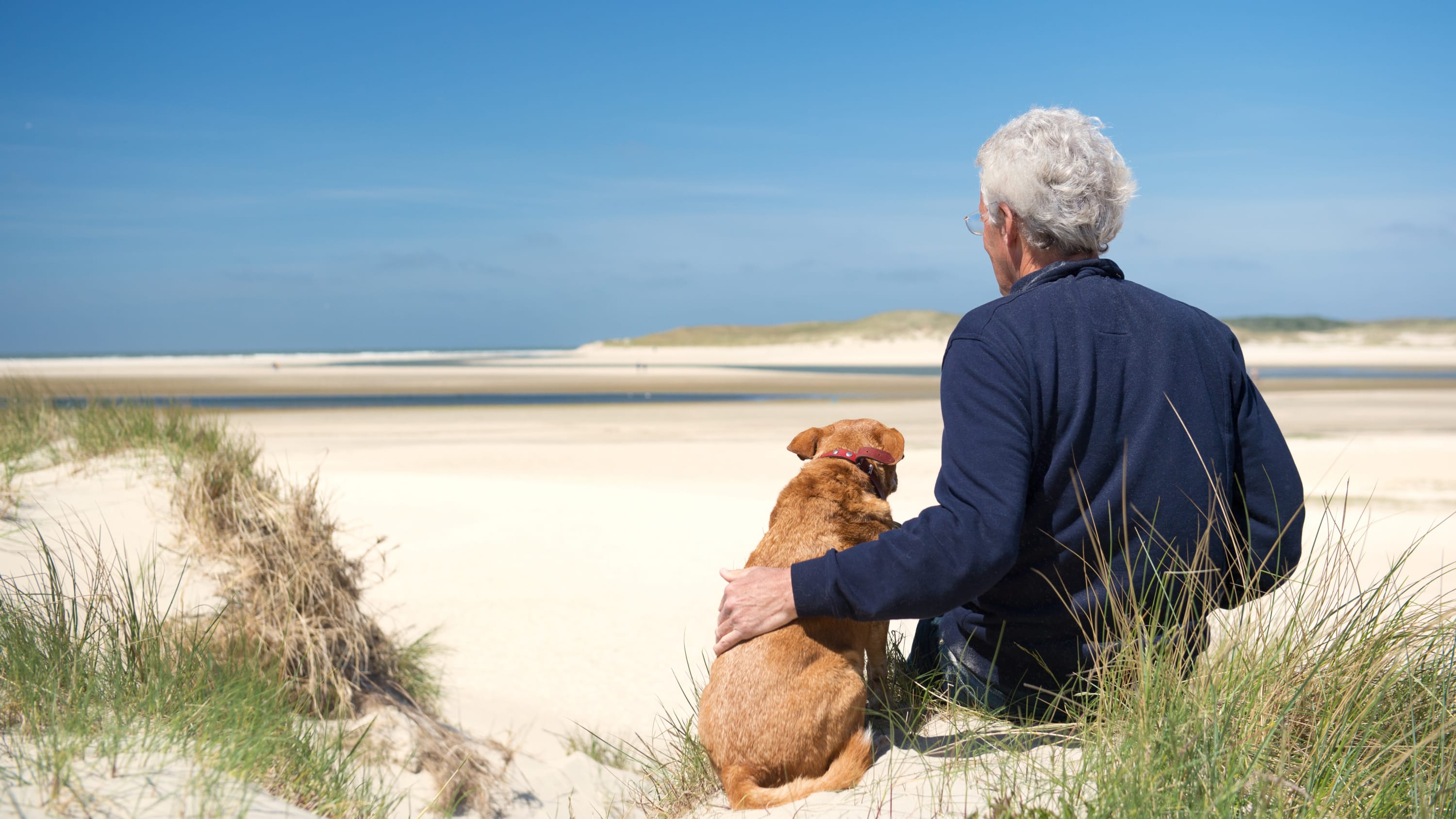A 60-something year old man, possibly thinking about psoriasis, sits on the beach with his dog.