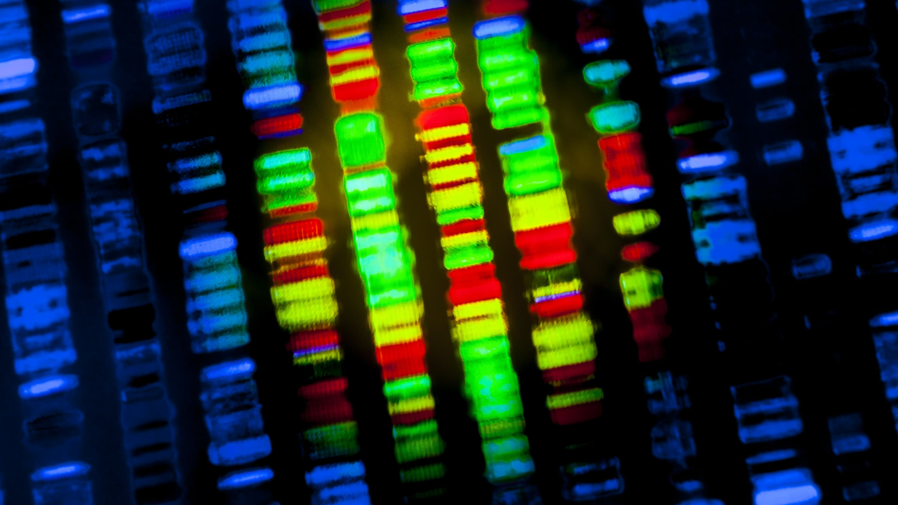 Columns of multiple colorful DNA show up on a dark background