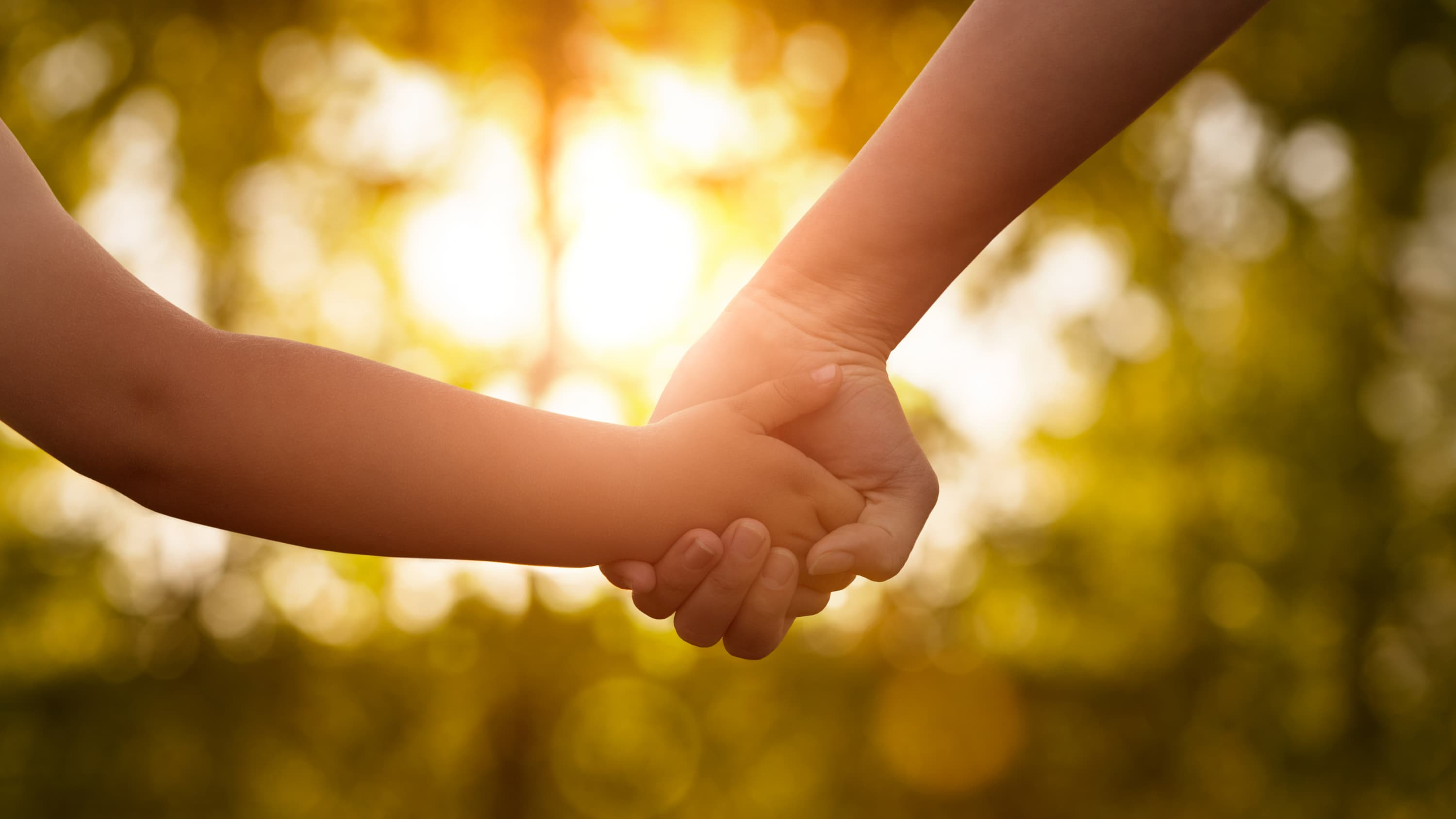 A child and a parent hold hands.