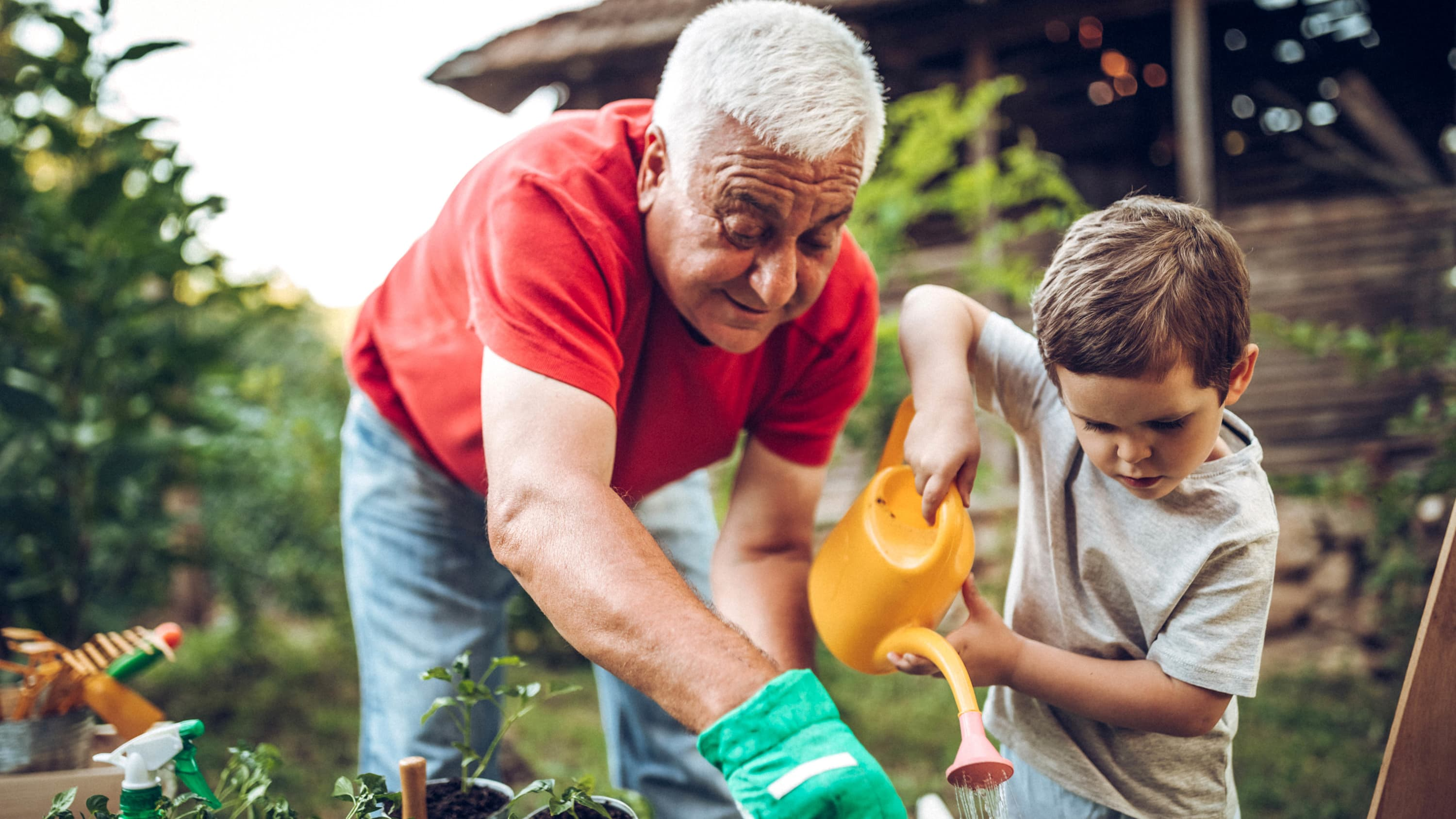 Grandfather with a VAD tends the garden with his grandson.