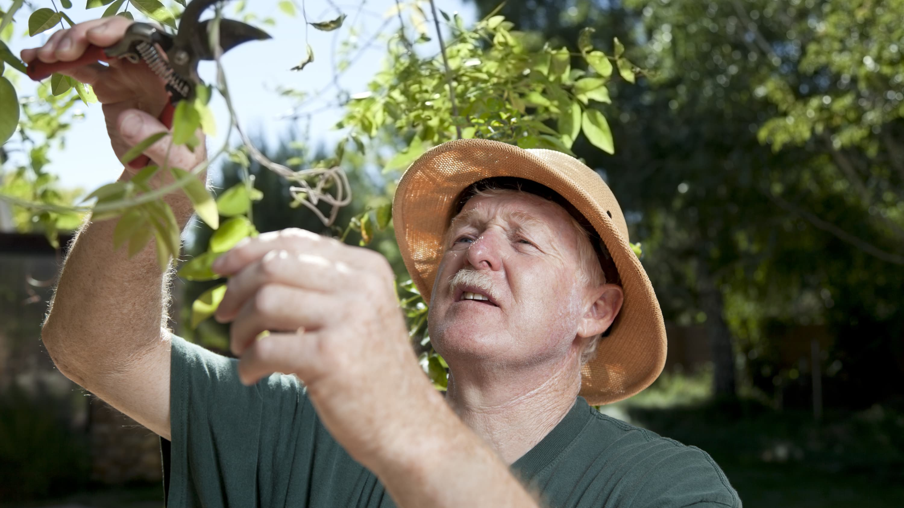 a man wears a hat while gardening to protect himself from basal cell carcinoma