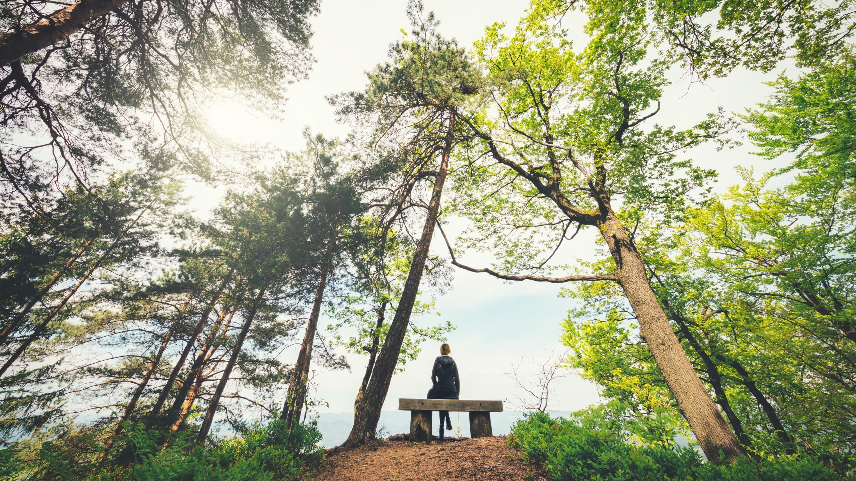 person sitting in nature, practicing mindfulness