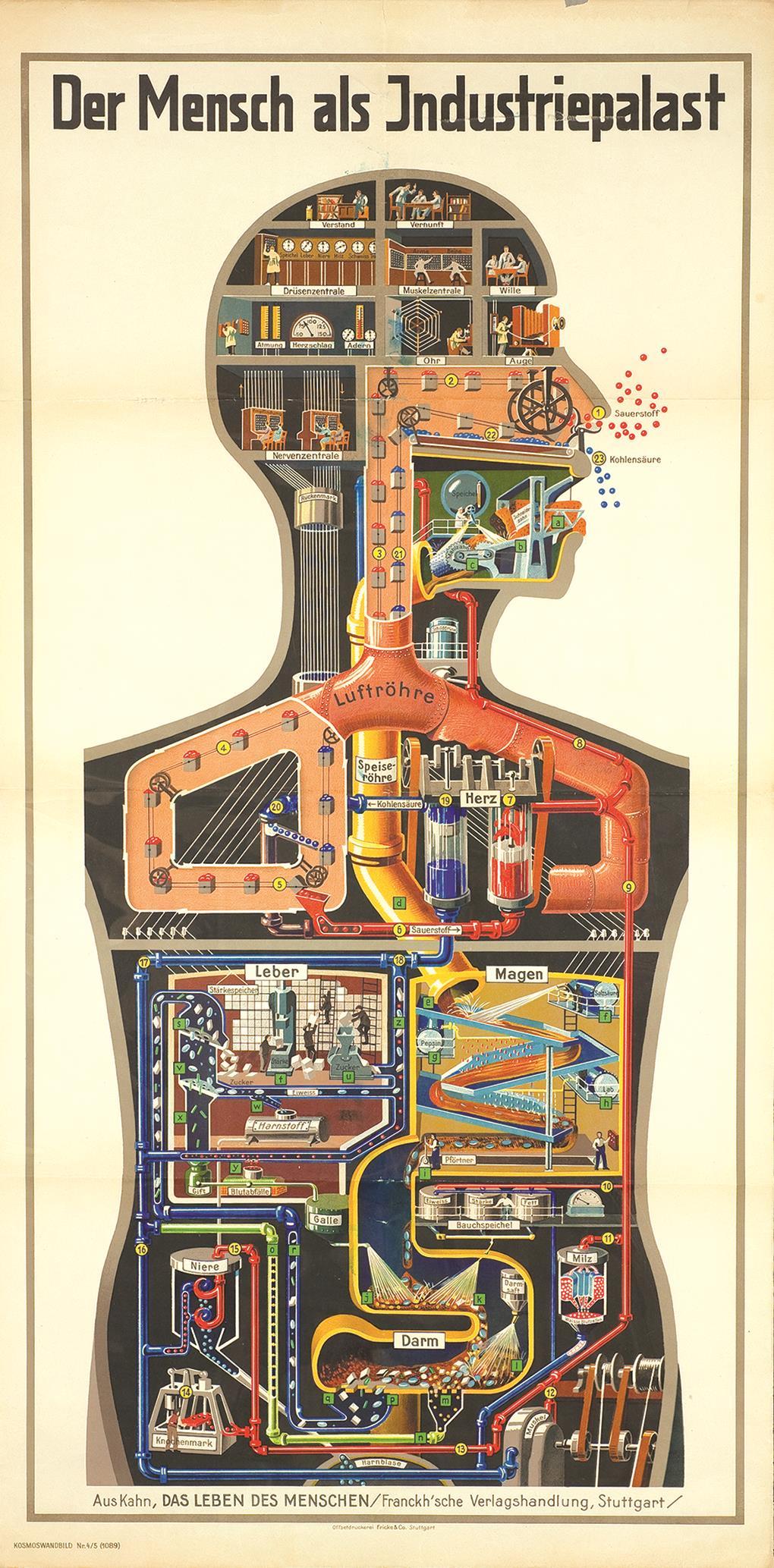 Man as an Industrial Palace