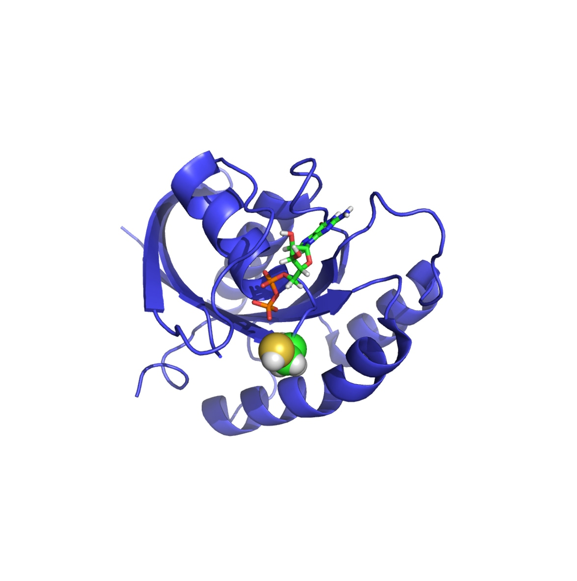 Crystal Structure of K-Ras G12C