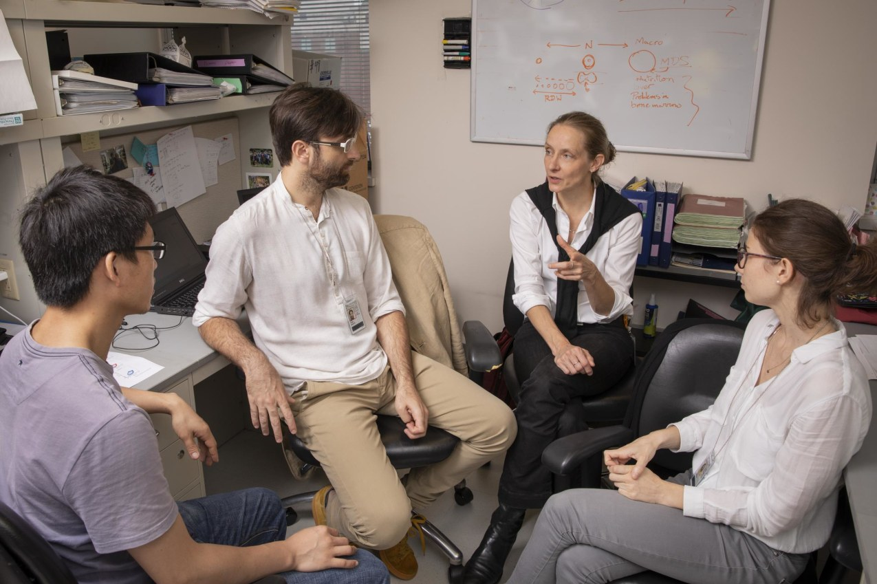 Dr. Stephanie Halene meets with her research team.