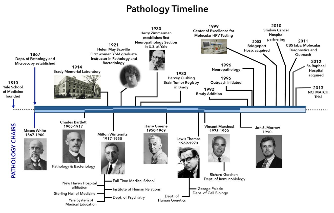 Pathology Timeline
