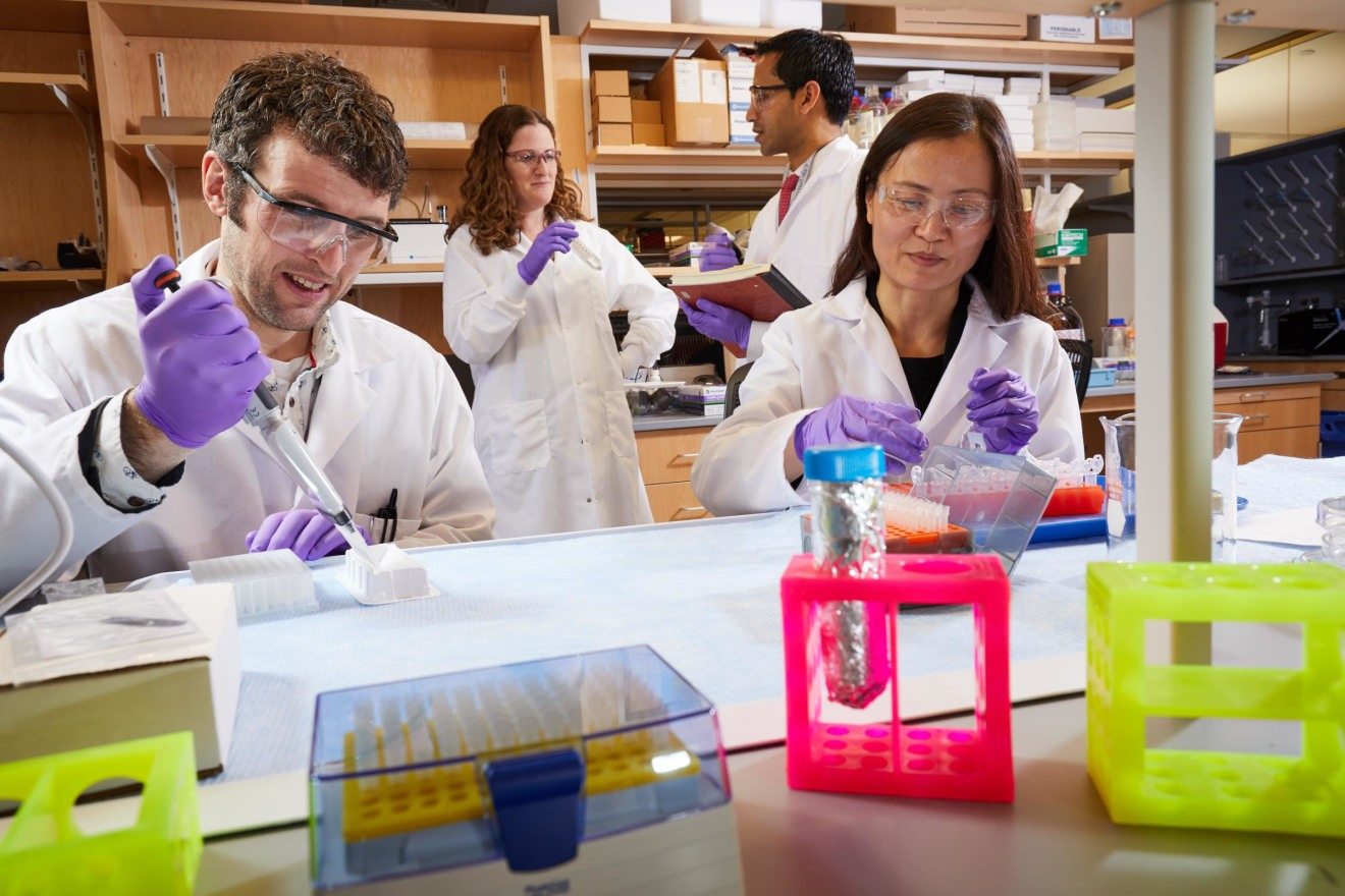 Innovative research in a laboratory setting