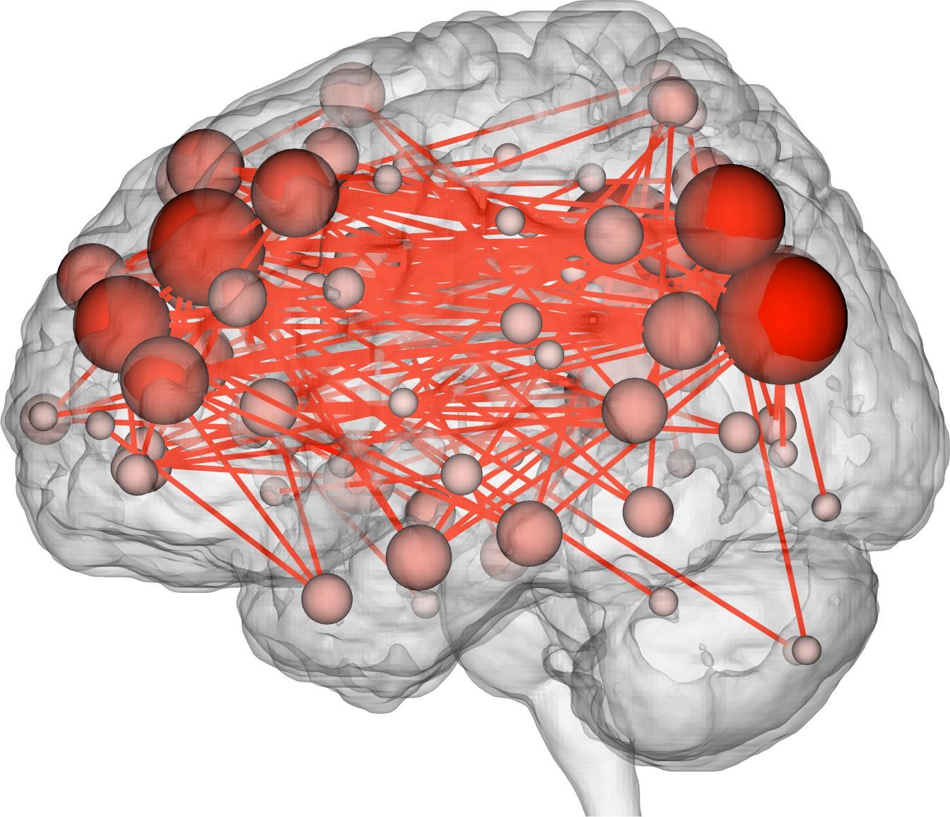 Brain Fingerprint