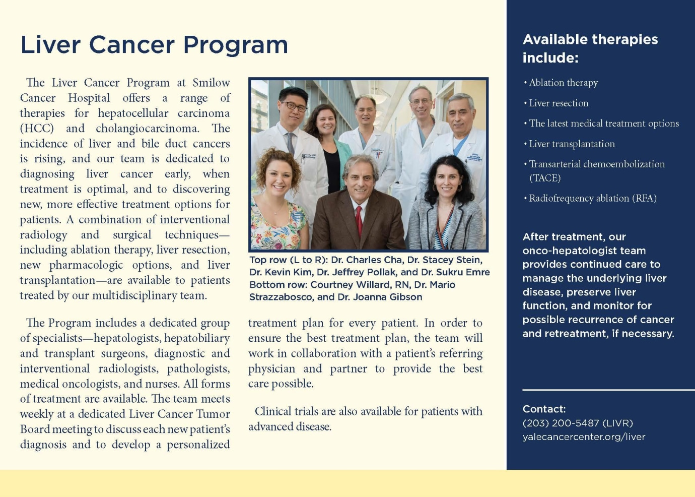 Liver Cancer Program