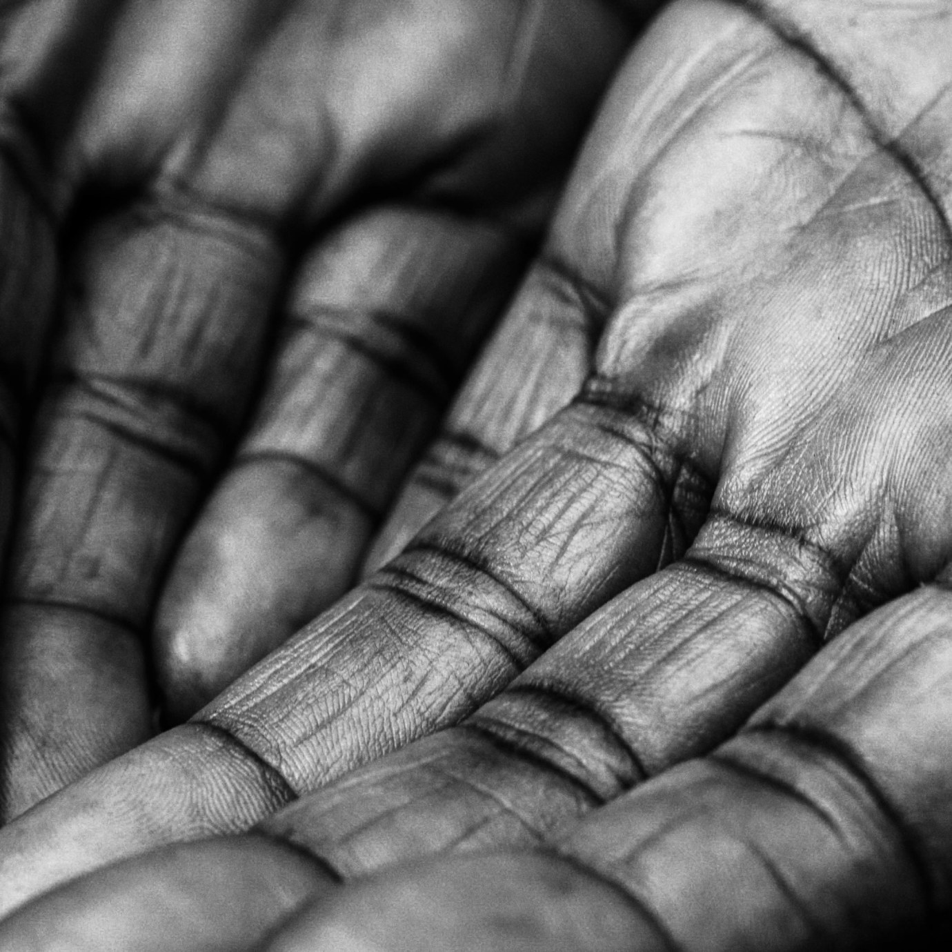 Close up detail of hands in black and white.