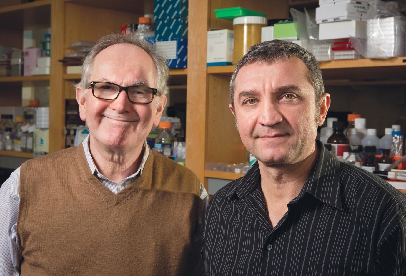 Richard Flavell (left) and Ruslan Medzhitov