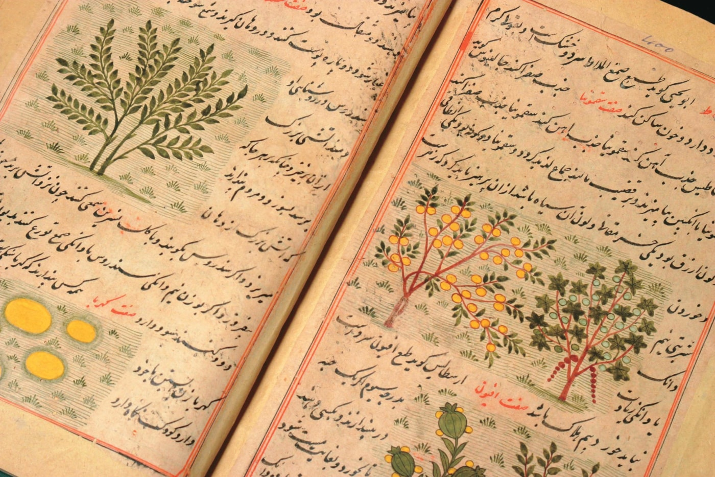 The 11th-century Persian manuscriptFarah namahwas also known asAjayib al-dunya(Wonders of the World). Multicolored illustrations of animals, birds, plants, stones and humans adorn the text.
