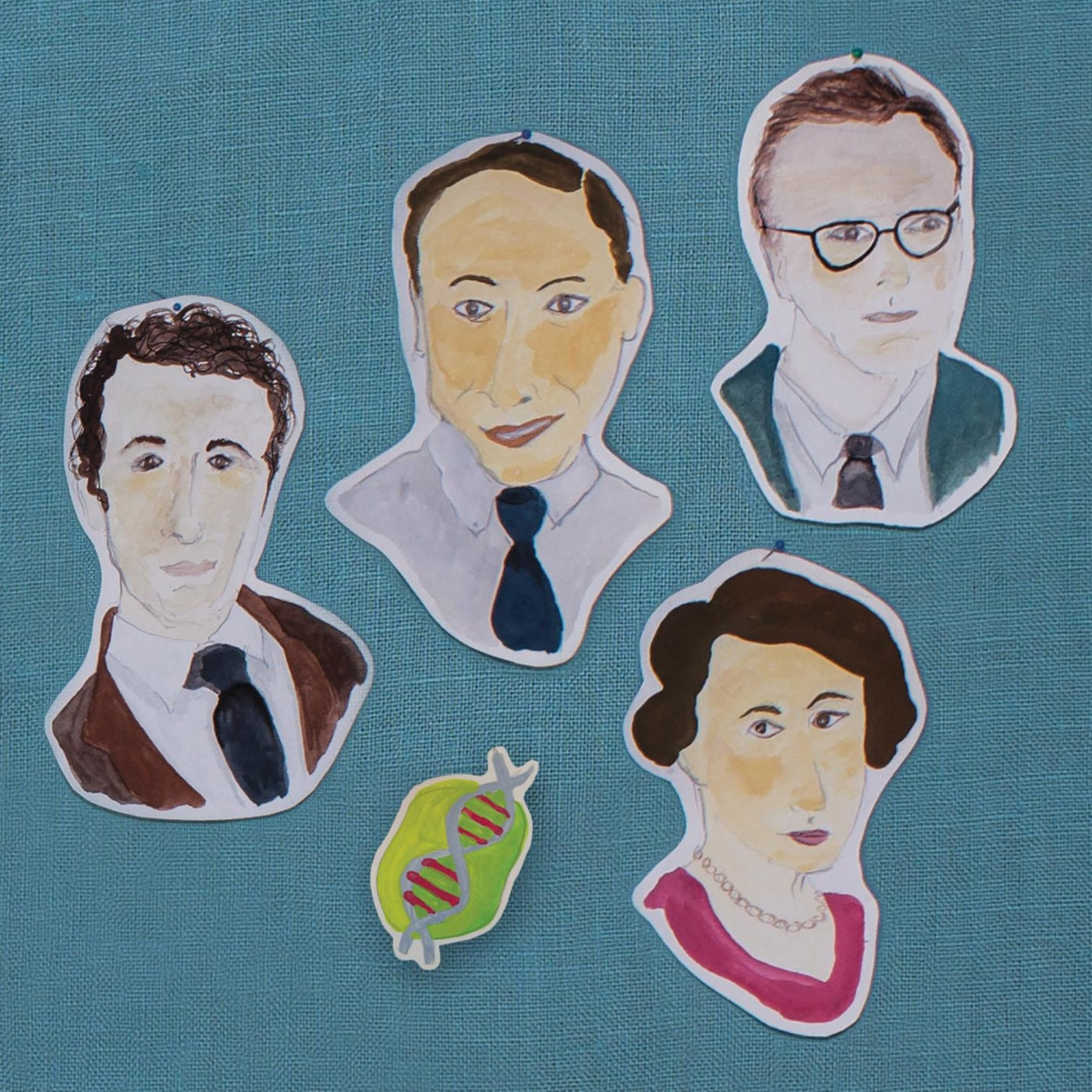 (Clockwise, left to right) Francis Crick, James Watson, Maurice Wilkins, and Rosalind Franklin