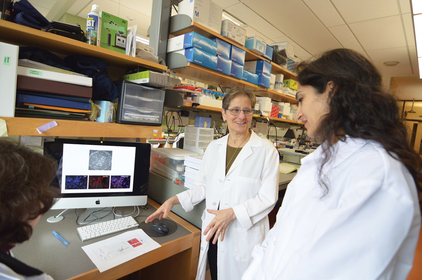 Finding Answers with Stem Cells