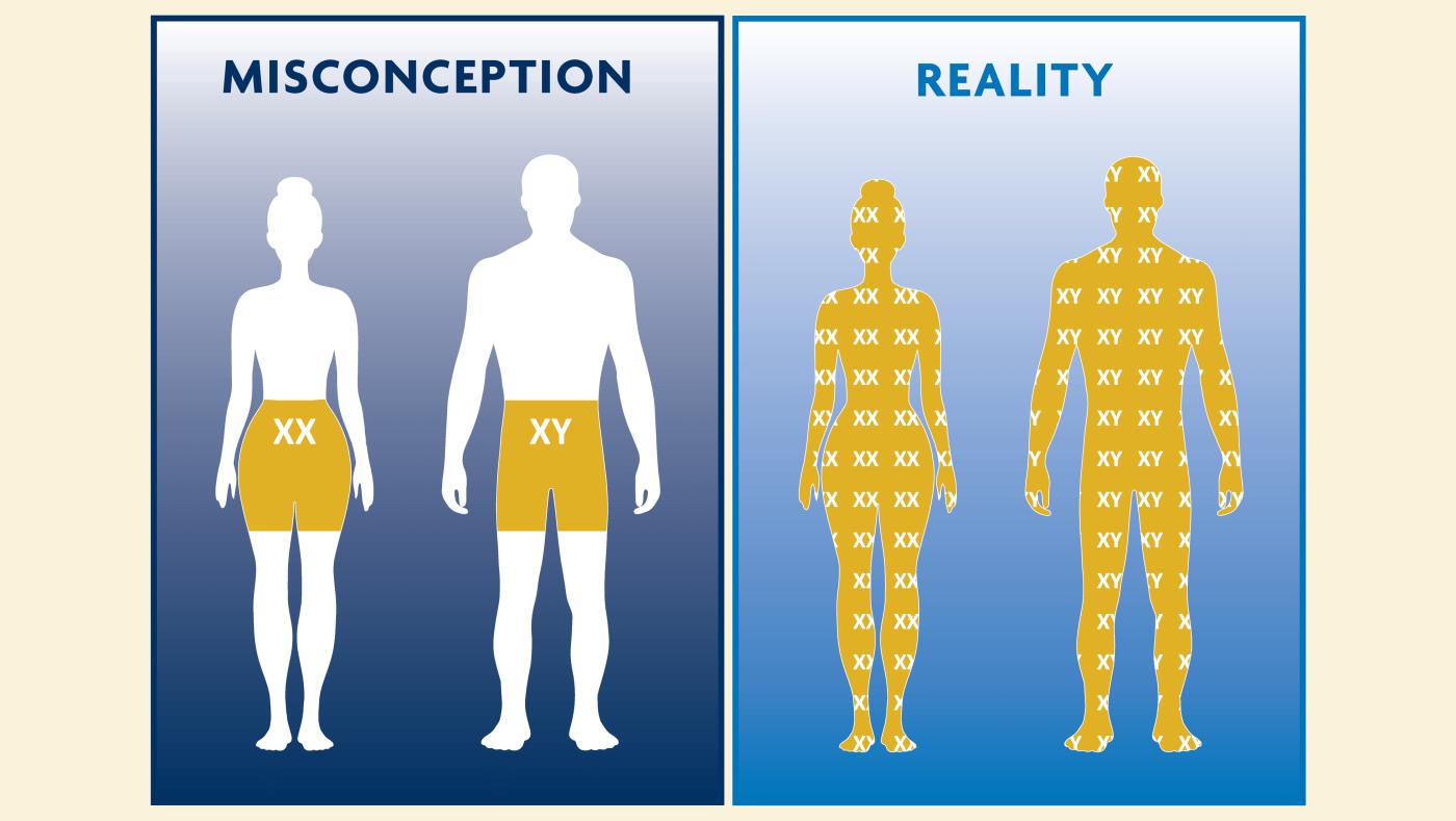 MISCONCEPTION vs. REALITY
