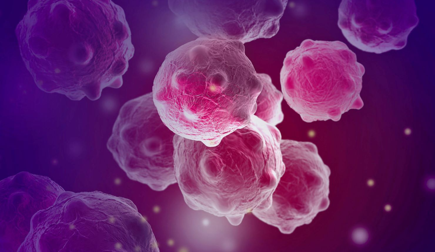 New Yale-led research may offer novel immunotherapies for skin, colon, breast, pancreatic and other cancers.