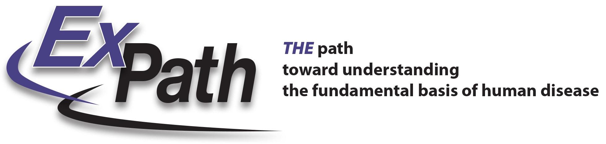 expath logo