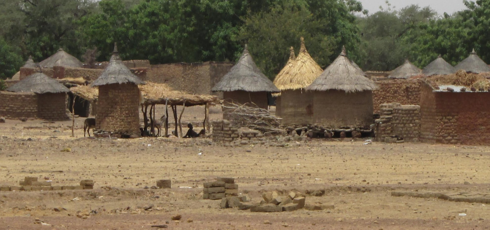 A village in sub-Saharan Africa