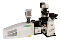 Ultraview spinning disc confocal