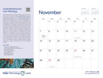 Yale Pathology Labs Calendar 2021 - November - GI and Liver Pathology