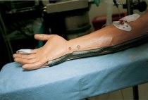 hand of simulator
