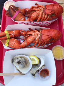 Lobster and raw oysters
