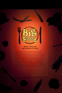 Big Food: Health, Culture and the Evolution of Eating
