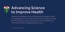 Advancing Science to Improve Health