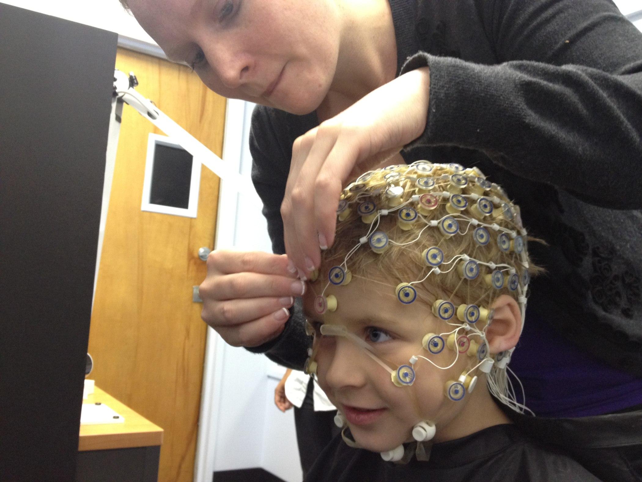 EEG net