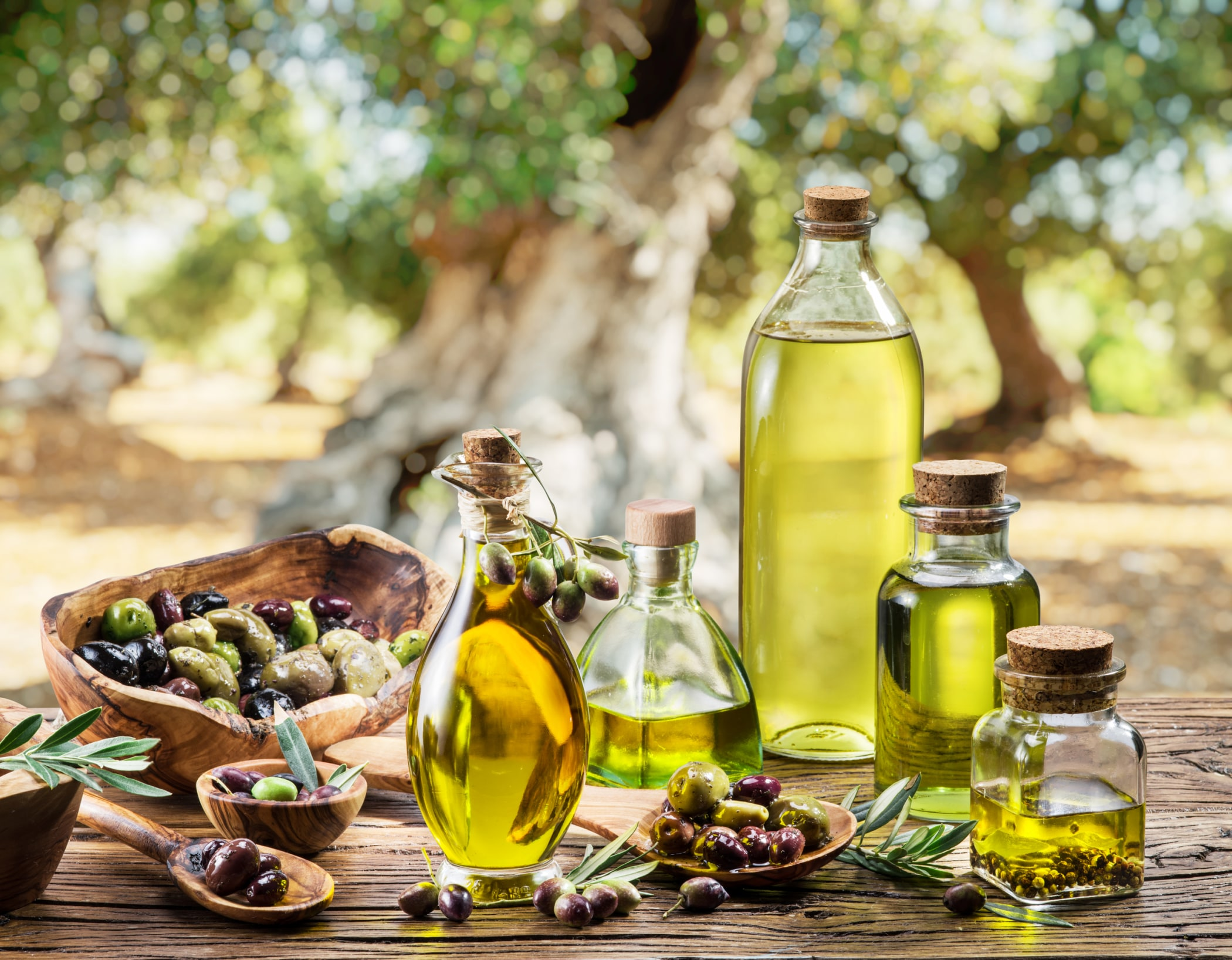 International Symposium on Olive Oil and Health