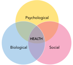 Diagram of intersection of Biological, Psychological and Social factors
