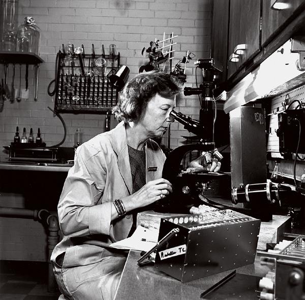 Dorothy Horstmann, in her laboratory in the 1970s, was the first woman to become a full professor at the medical school.