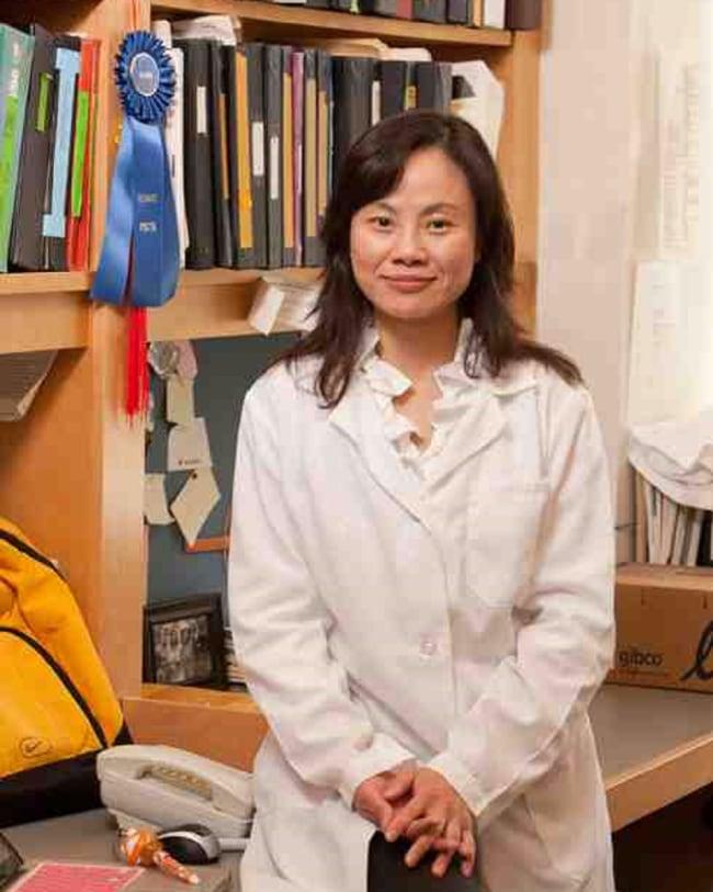 Meiling Zhu