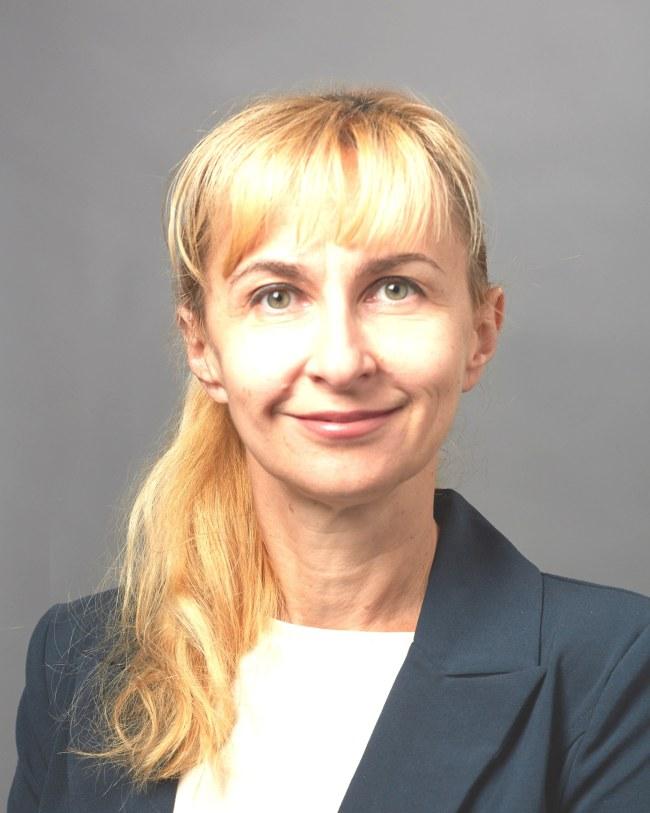 Elina A. Stefanovics