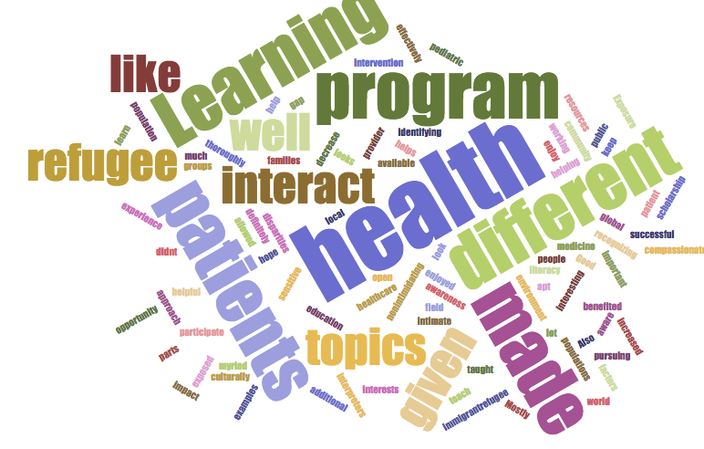 Y-HEALAR Word Cloud