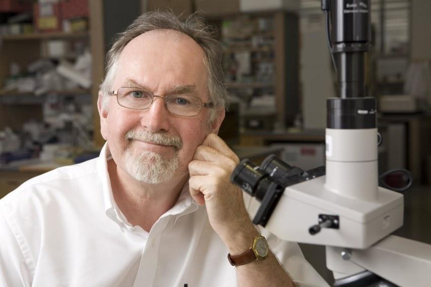 Dr. Richard Flavell