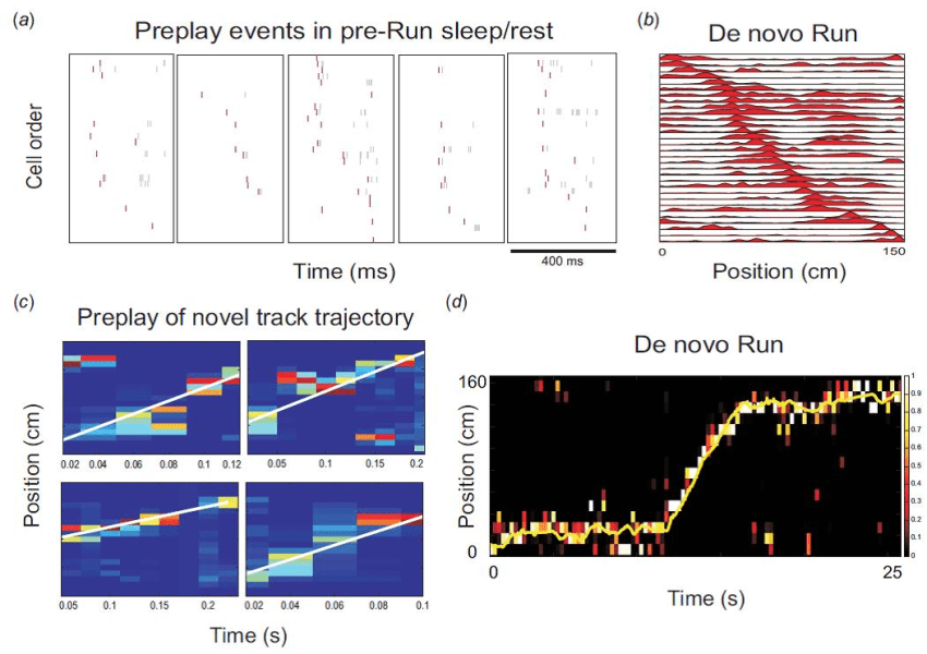 Preplay of Future Place Cell Sequences and Spatial Trajectories