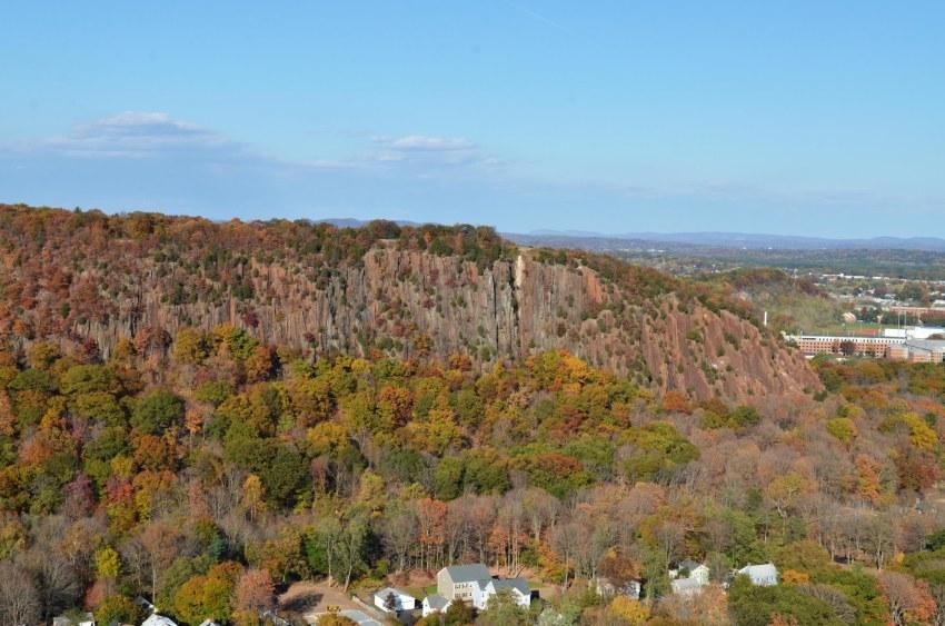 Aerial photo of autumn foliage