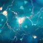 neurons-crop