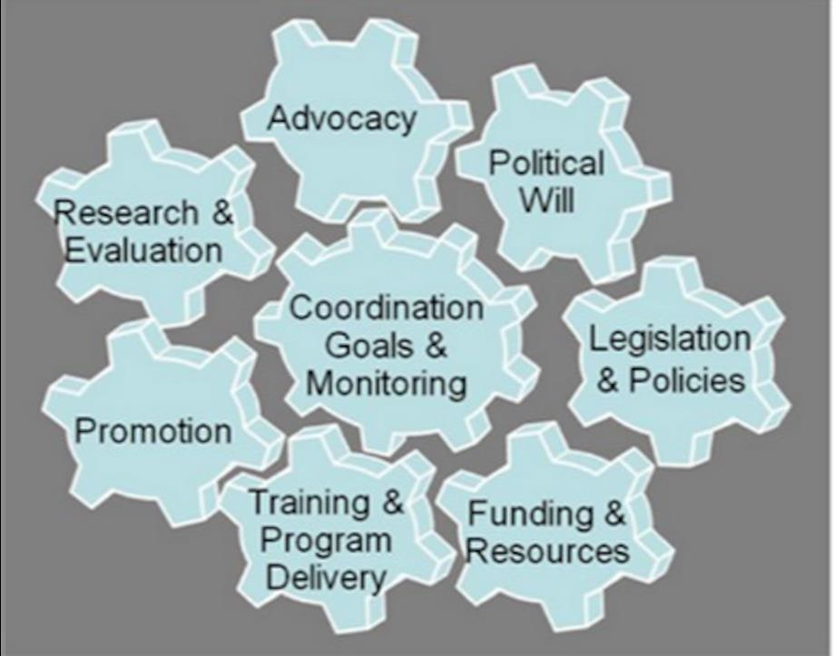 Gears: Coordination Goals & Monitoring in center. On outside: Advocacy, Political Will, Legislation & Policies, Funding & Resources, Training & Program Delivery, Promotion, Research & Evaluation