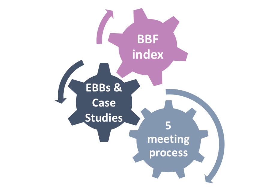 Gears: BBF index, EBBs & Case Studies, 5 meeting process