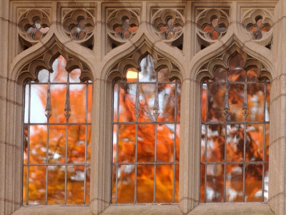 Yale University windows