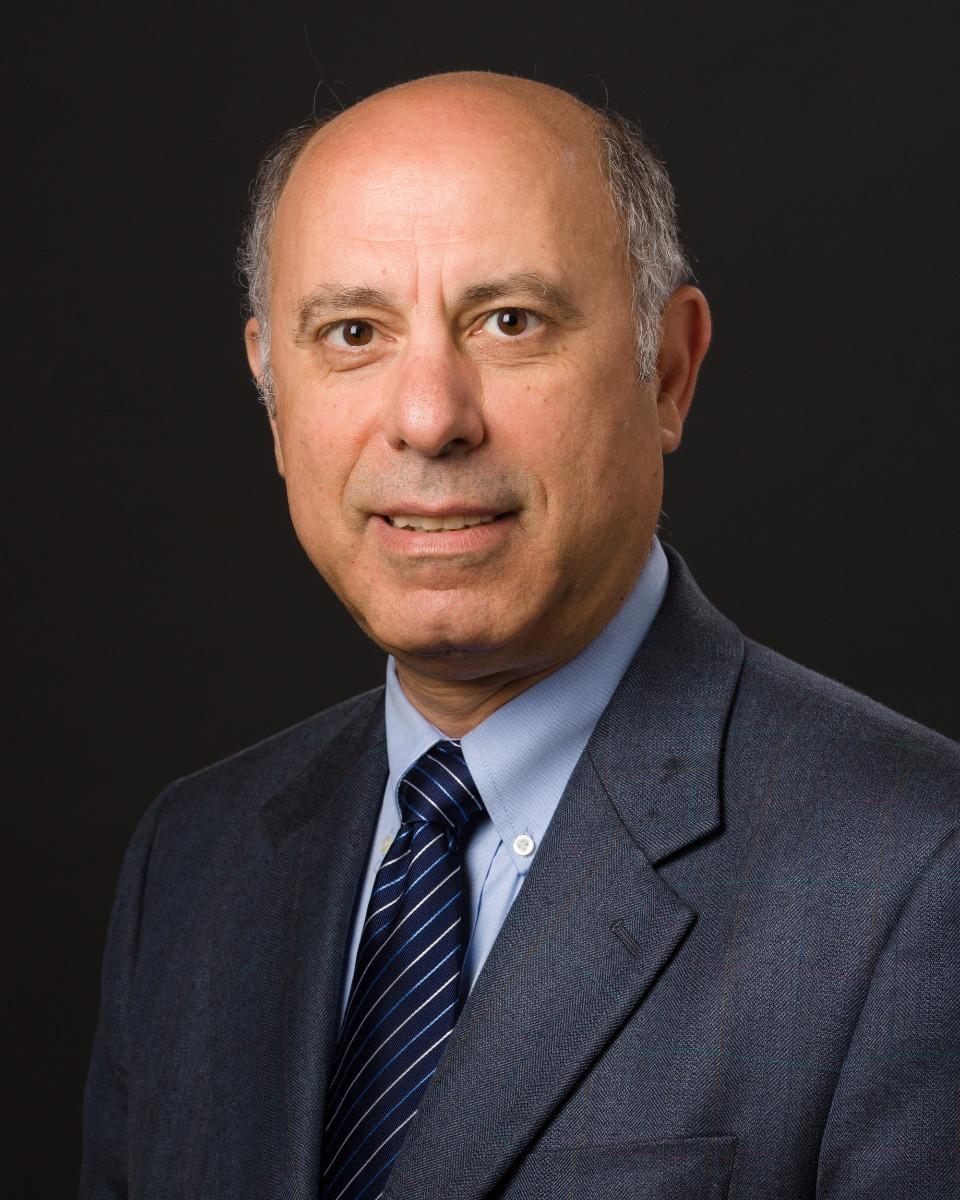 Sulayman Dib-Hajj