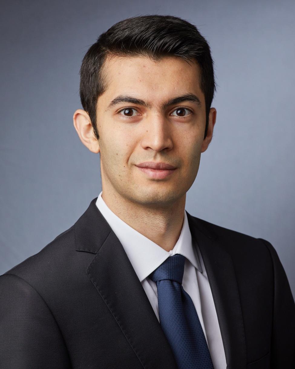 Arsalan Hashemiaghdam