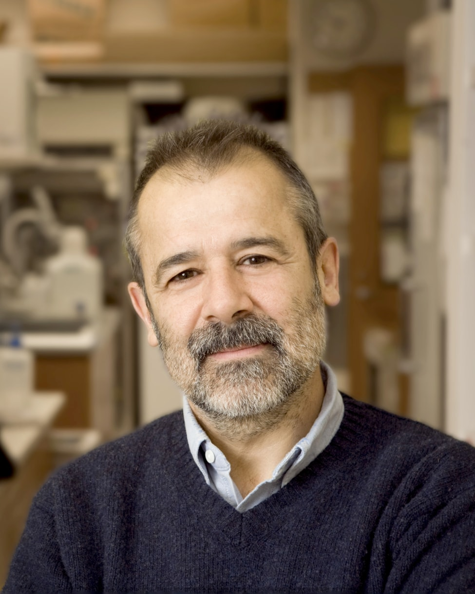 Jorge Galán