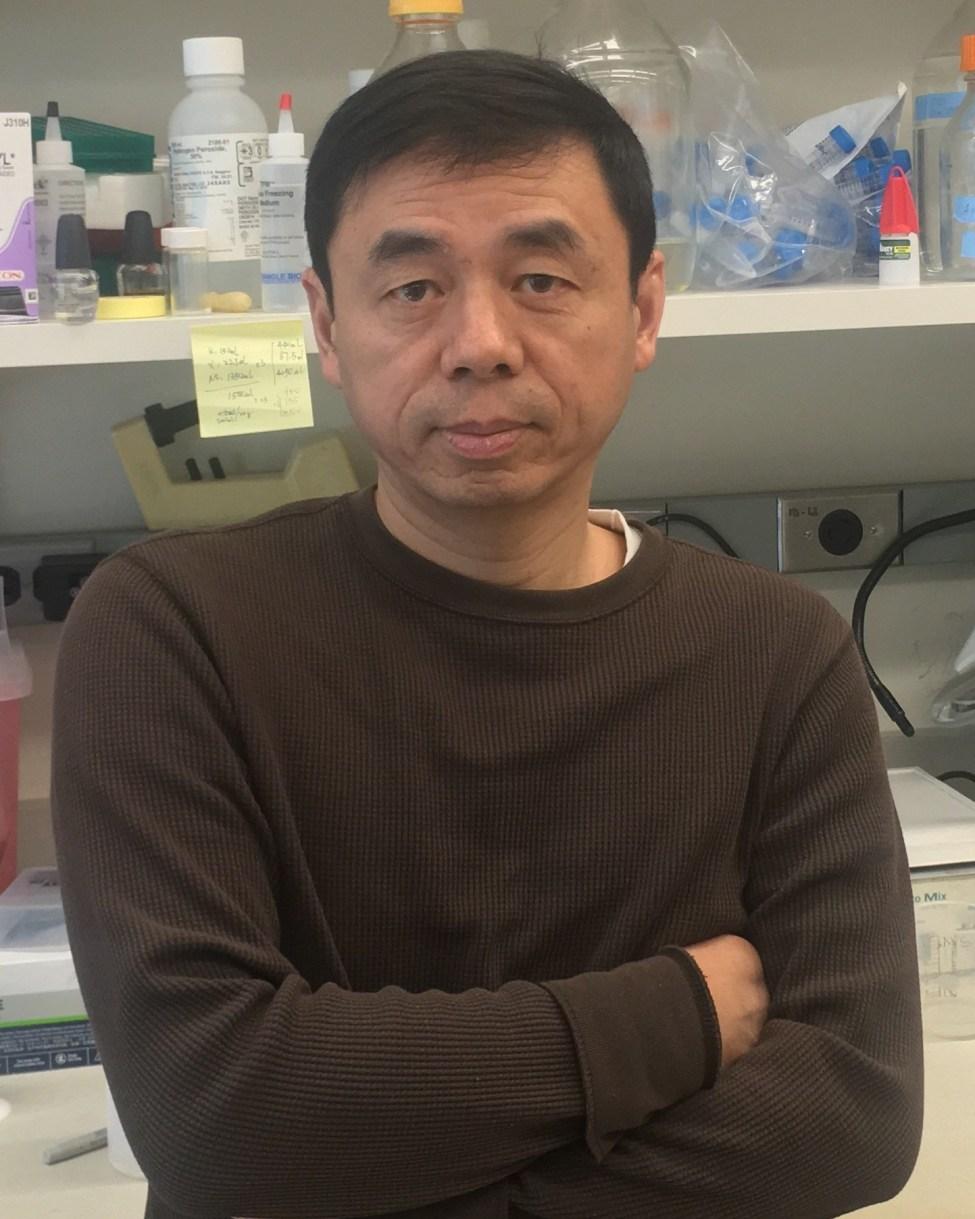 Xingxing Wang