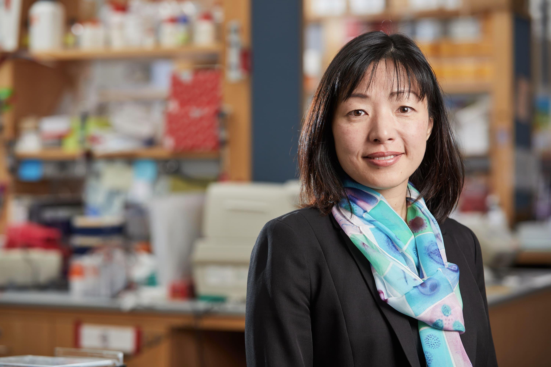 Akiko Iwasaki, PhD
